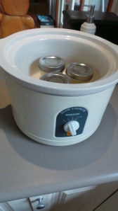 Place your jars in water in a slow cooker...
