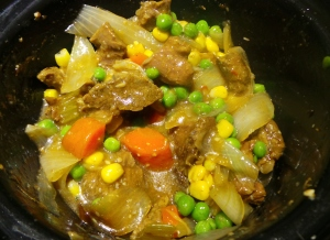 Asian-flavoured slow-cooked beef