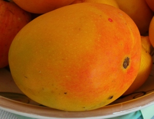 A gorgeously ripe, in-season mango.