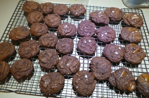 Chocolate biscuits.